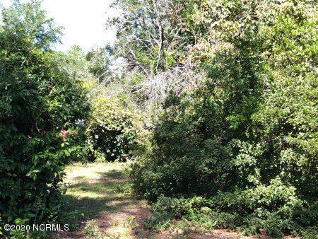 Photo of 5810 Camellia Lane, Wilmington, NC 28409 (MLS # 100220514)