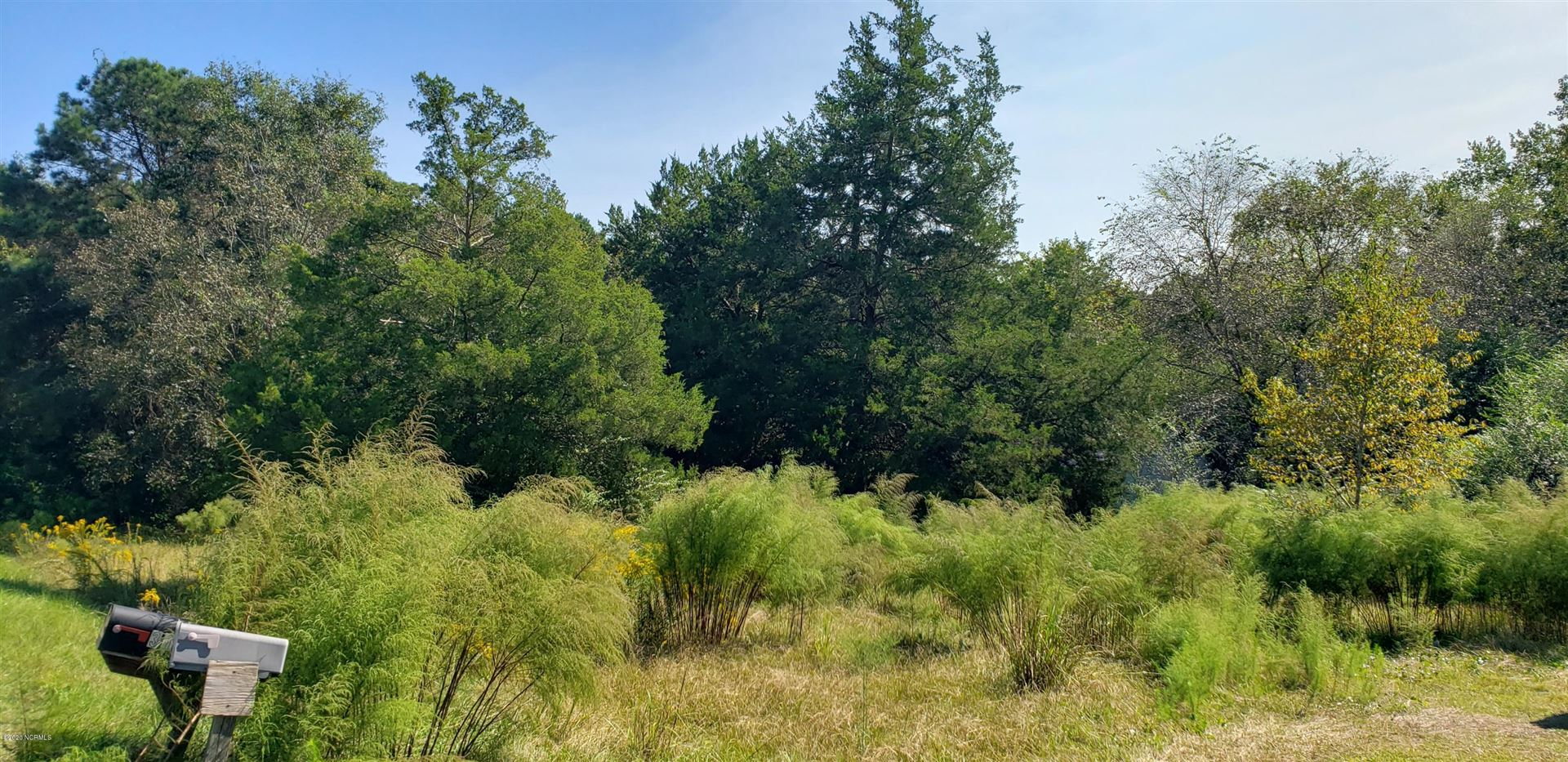 Photo of 311 Bull Tail Road, Wallace, NC 28466 (MLS # 100243514)