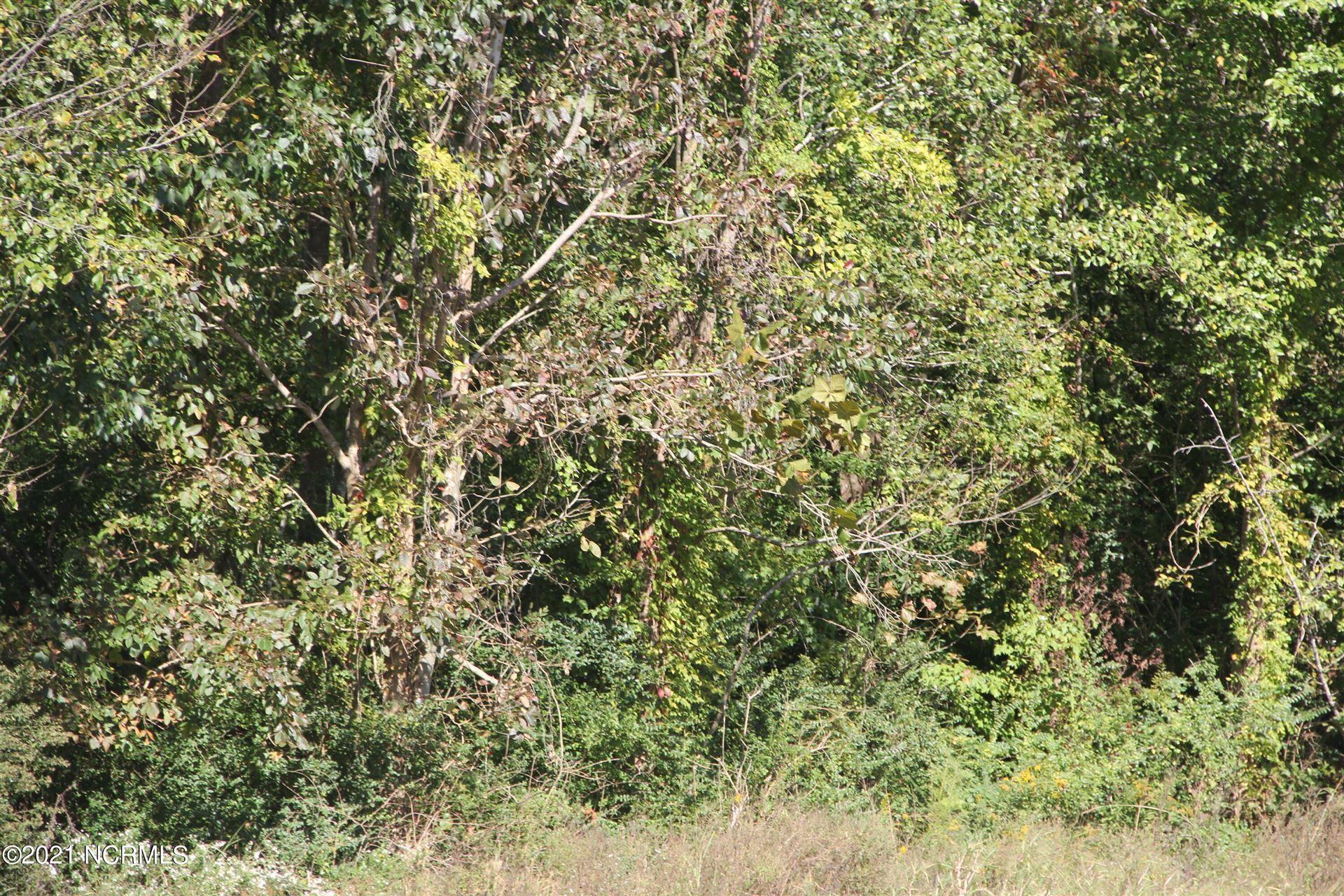 Photo of 1 Shelter Creek, Burgaw, NC 28425 (MLS # 100295520)