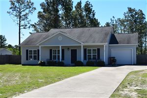 Photo of 104 Courtney Pines Road, Maple Hill, NC 28454 (MLS # 100165525)