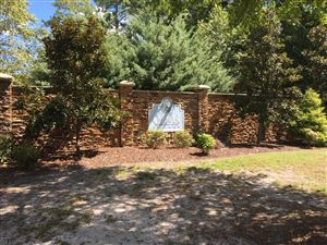 Photo of 236 Shellbank Drive, Sneads Ferry, NC 28460 (MLS # 100132526)