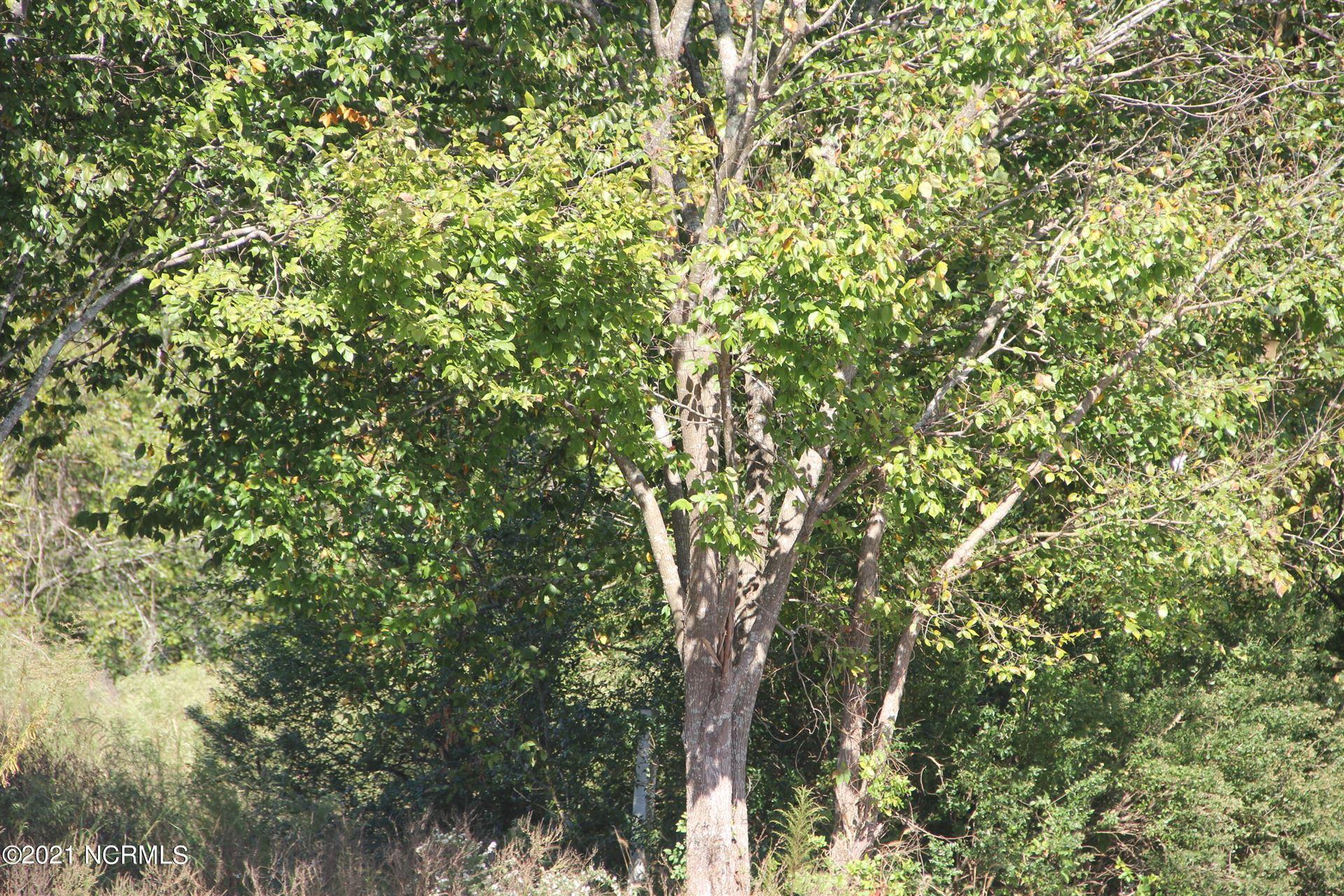 Photo of 1 Shelter Creek Drive, Burgaw, NC 28425 (MLS # 100295527)