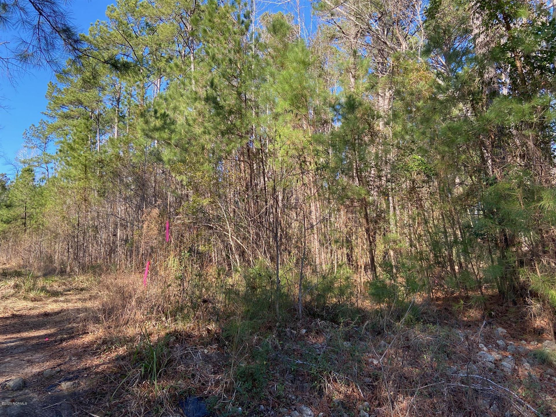 Photo of Tract 2 North Bend Road, Wilmington, NC 28411 (MLS # 100287530)