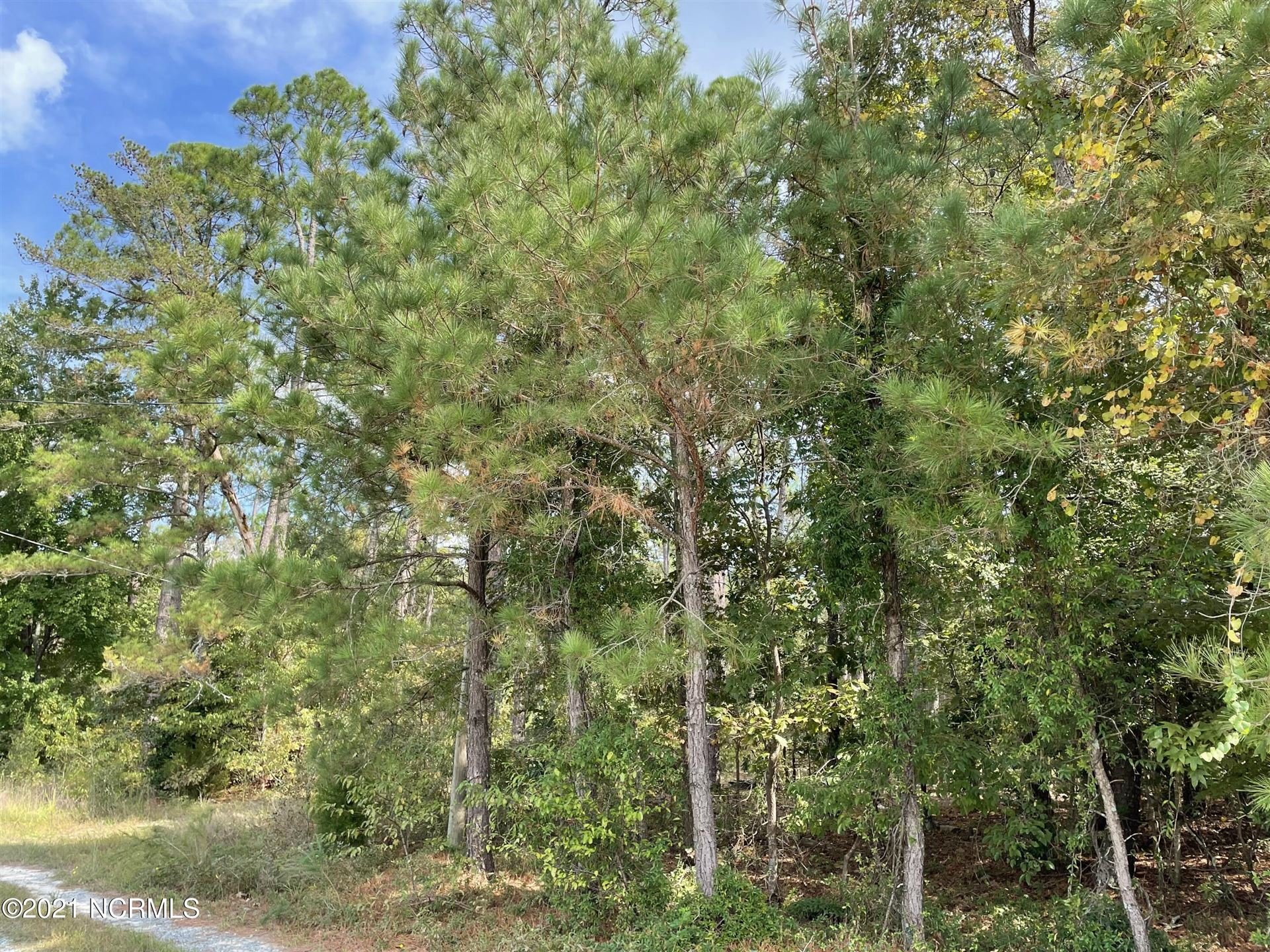 Photo of 312 Lamms Grove Rd Ext Ext, Cameron, NC 28326 (MLS # 100296533)