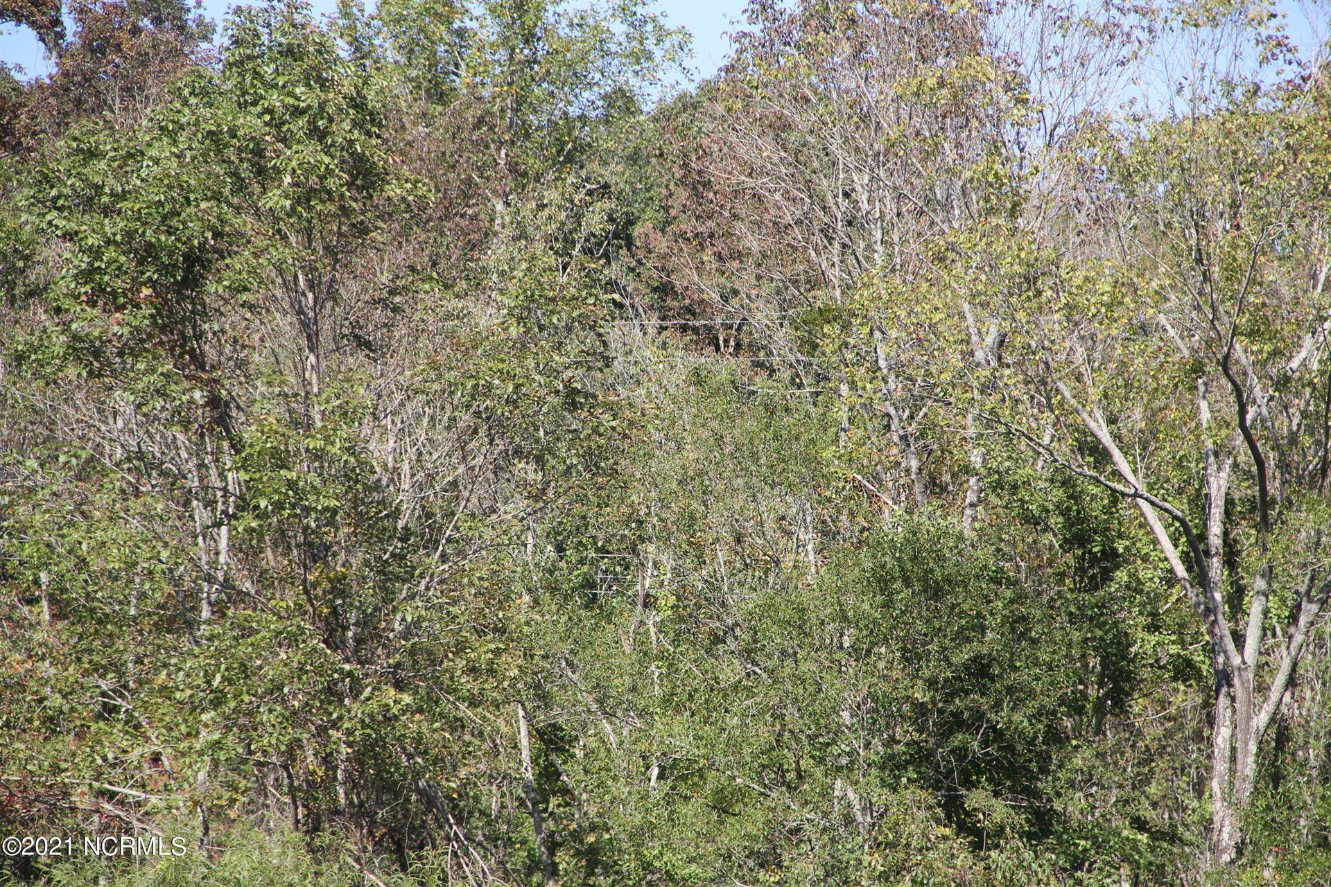 Photo of 2 Shelter Creek Dr., Burgaw, NC 28425 (MLS # 100295534)