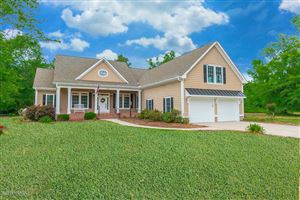 Photo of 113 Sugar Maple Court, Wallace, NC 28466 (MLS # 100167543)