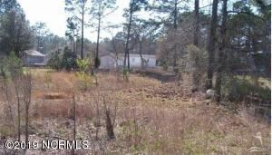Photo of 1320 Fifty Lakes Drive, Boiling Spring Lakes, NC 28461 (MLS # 100185543)