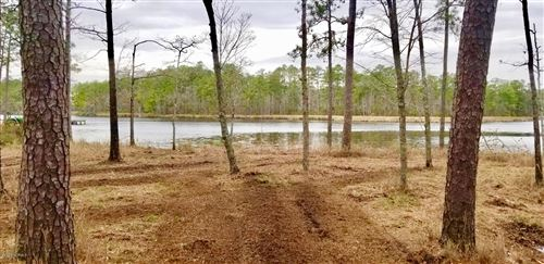 Photo of 267 Pitch Kettle Court, Belhaven, NC 27810 (MLS # 100209544)