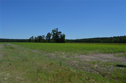 Photo of Lot 2r Piney Woods Road, Burgaw, NC 28425 (MLS # 100271546)