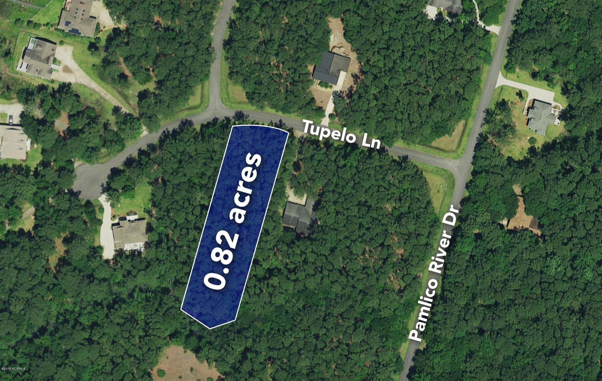 Photo of Lot 117 Tupelo Lane, Washington, NC 27889 (MLS # 100153548)