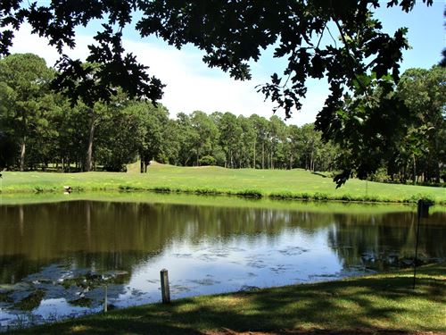 Photo of 232 Crooked Gulley Circle, Sunset Beach, NC 28468 (MLS # 100230559)