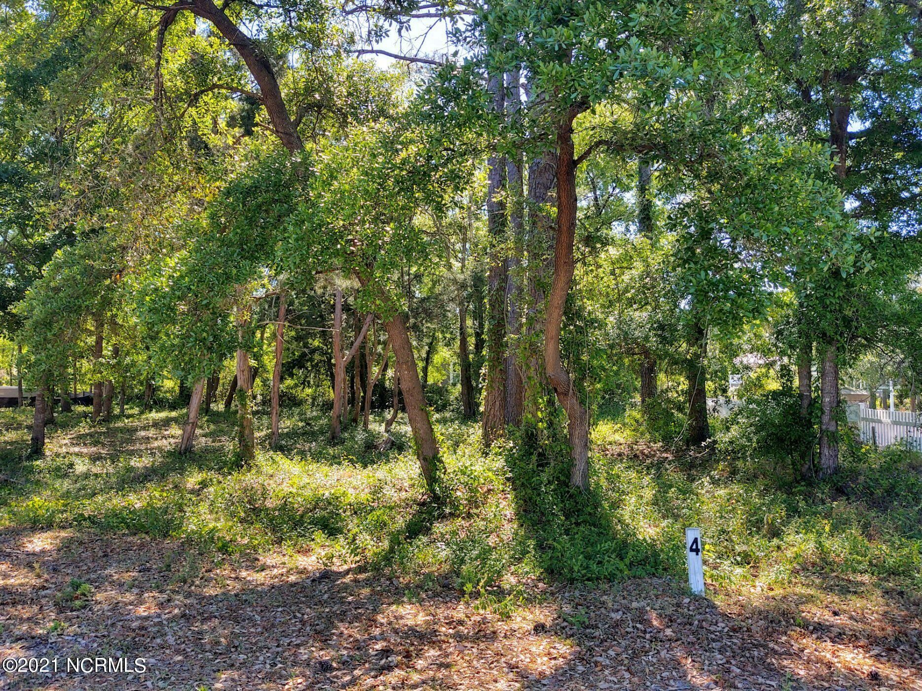 Photo of 658 Wild Rose Way, Southport, NC 28461 (MLS # 100269560)