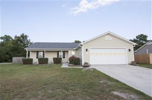 Photo of 234 Redberry Drive, Richlands, NC 28574 (MLS # 100179561)