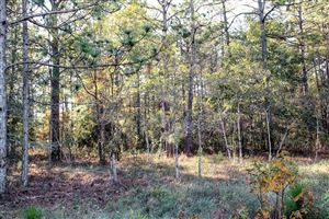 Photo of 3 Deer Run Road, Carolina Shores, NC 28467 (MLS # 100141565)