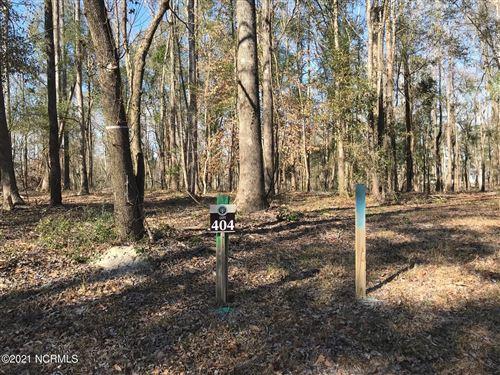 Photo of 133 Kerr Landing Drive, Castle Hayne, NC 28429 (MLS # 100259568)