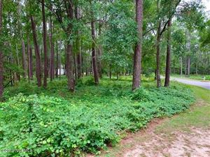 Photo of 3138 Channel Drive SE, Bolivia, NC 28422 (MLS # 100178571)