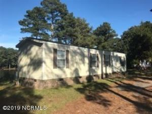 Photo of 1097 Sampson Acres Drive, Clinton, NC 28328 (MLS # 100188571)