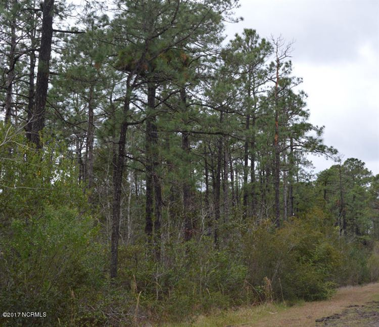Photo of 3 Thicketwood Drive, Calabash, NC 28467 (MLS # 20652571)