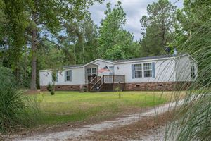 Photo of 3575 Blueberry Road, Currie, NC 28435 (MLS # 100168573)