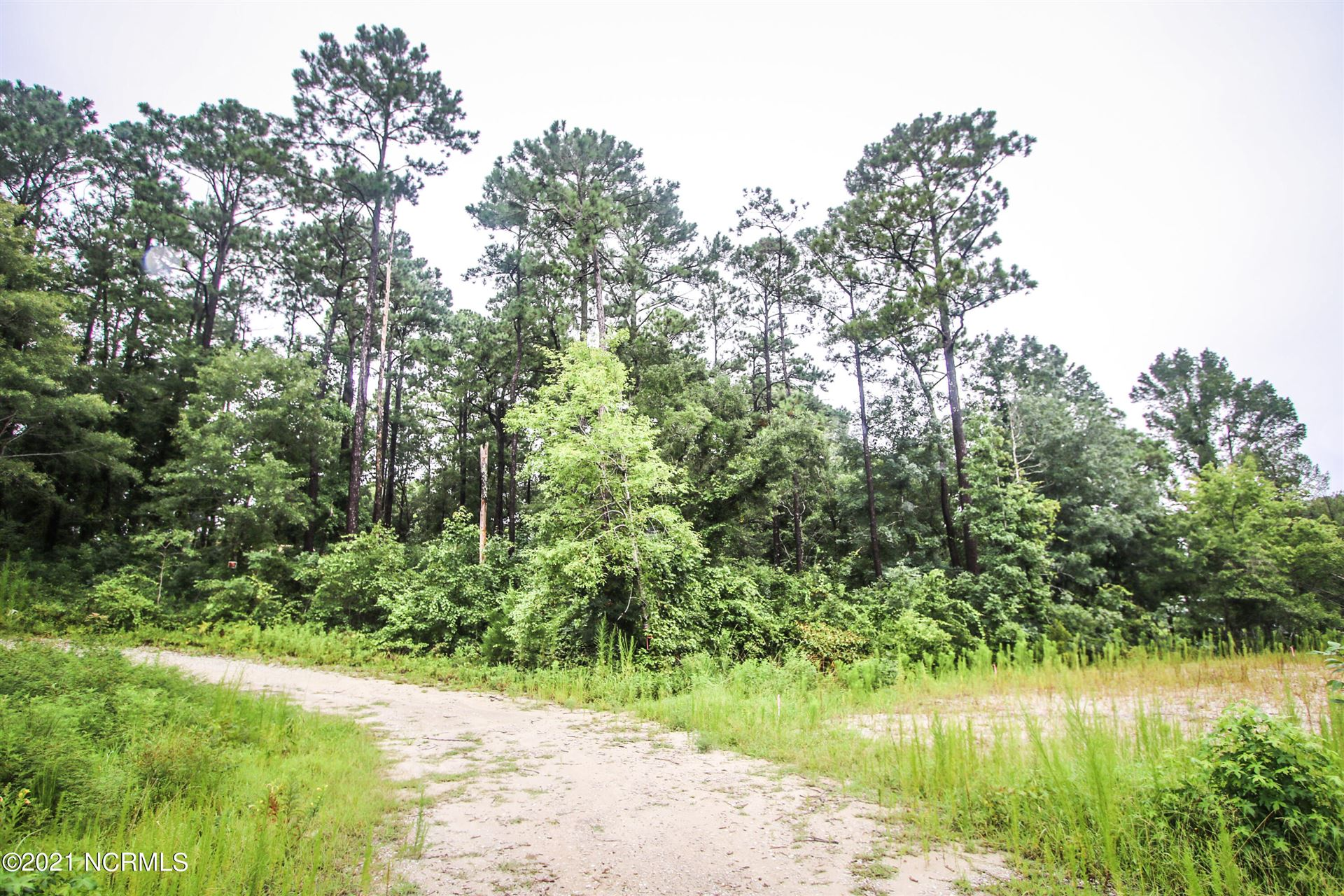 Photo for 106 Woodington Circle, Sneads Ferry, NC 28460 (MLS # 100284576)
