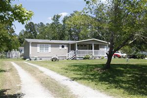 Photo of 122 Hunter Court, Rocky Point, NC 28457 (MLS # 100167578)