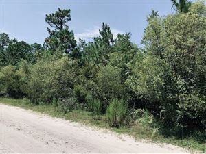 Photo of Lot 9 & 10 Stag Drive, Hampstead, NC 28443 (MLS # 100179580)