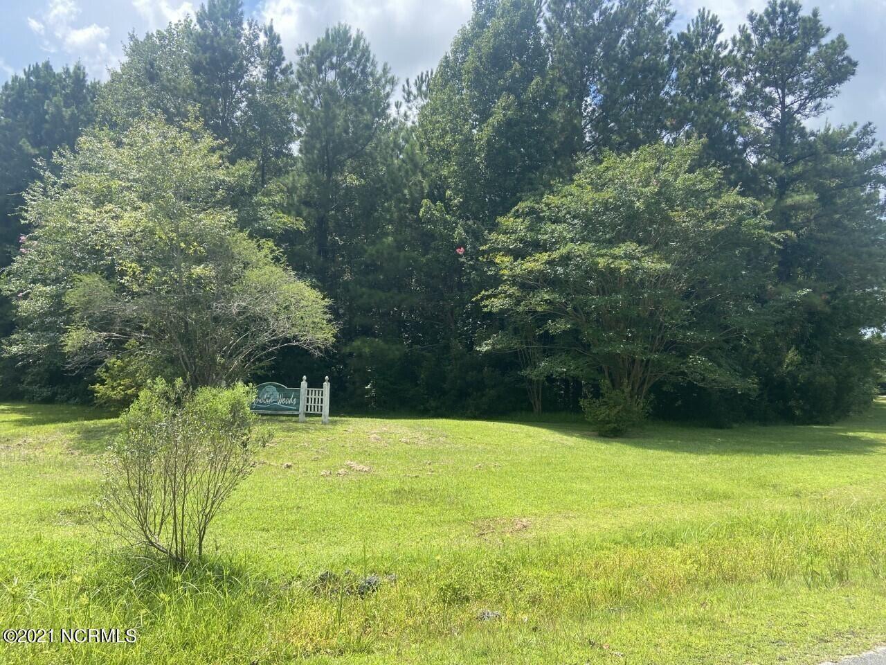 Photo of 25 Magnolia Way, Grantsboro, NC 28529 (MLS # 100287580)