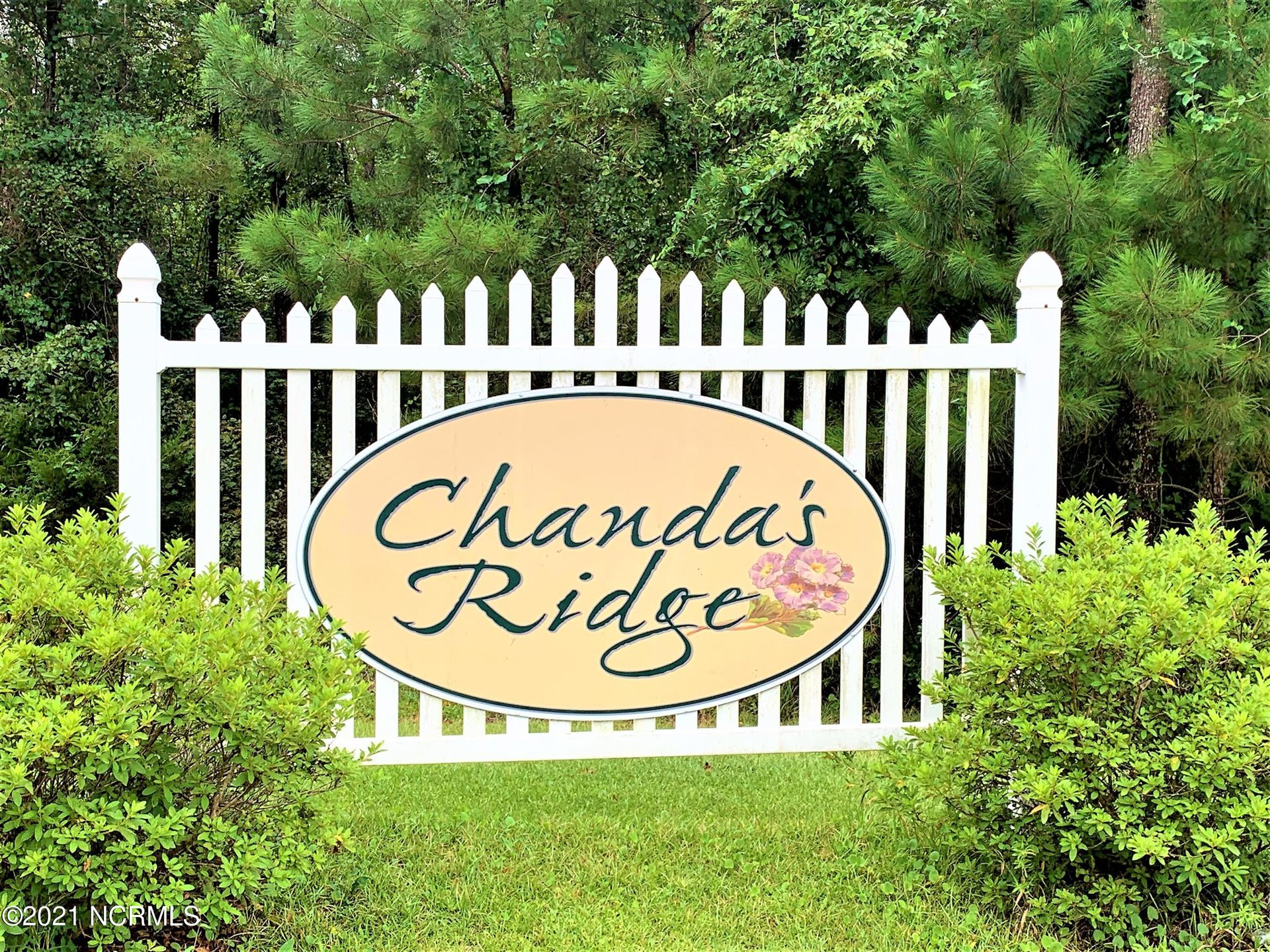 Photo of 103 Chandas Place, Maple Hill, NC 28454 (MLS # 100285583)