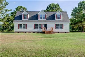 Photo of 209 Mustang Court, Maysville, NC 28555 (MLS # 100175605)