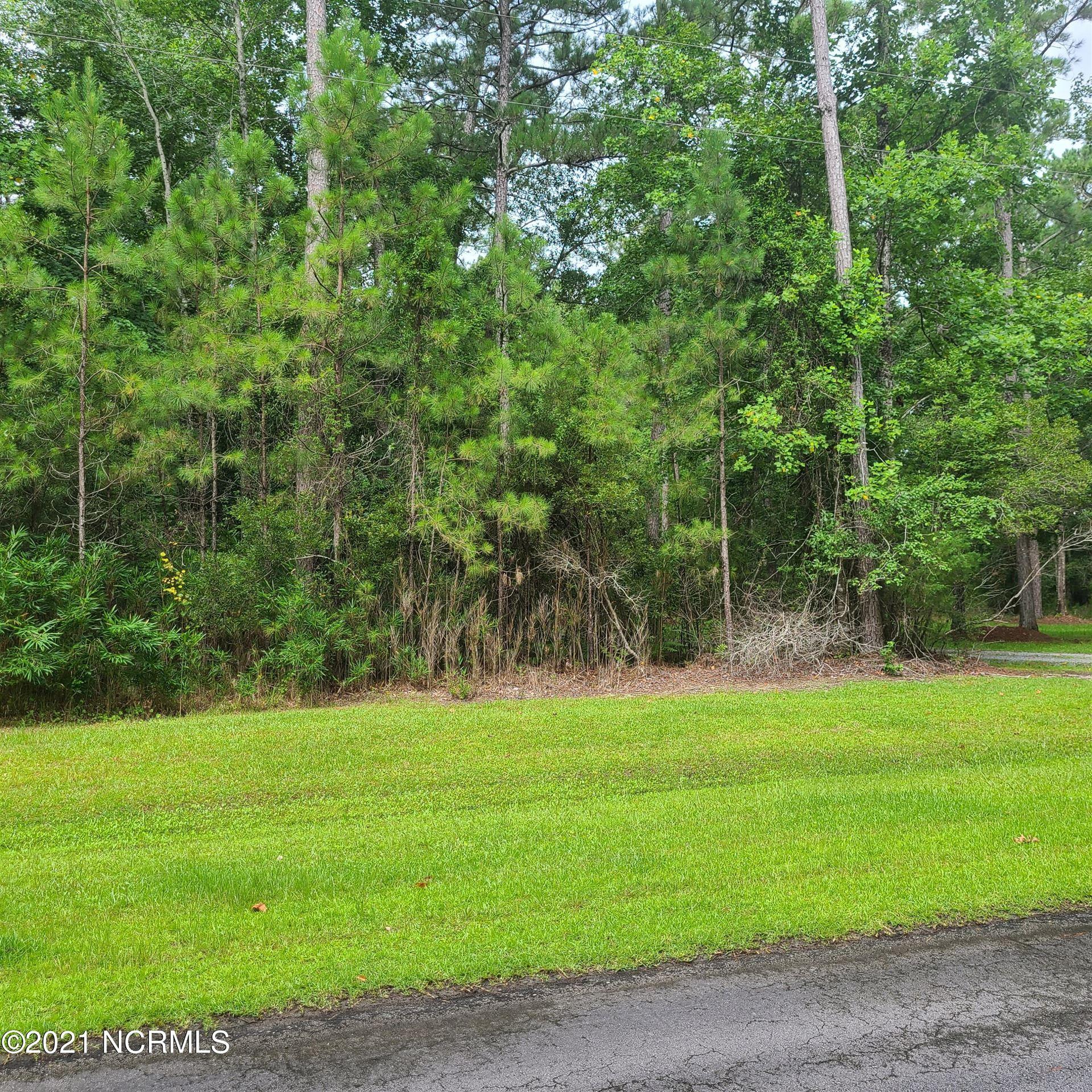 Photo of 176 Moores Creek Drive, Merritt, NC 28556 (MLS # 100281609)