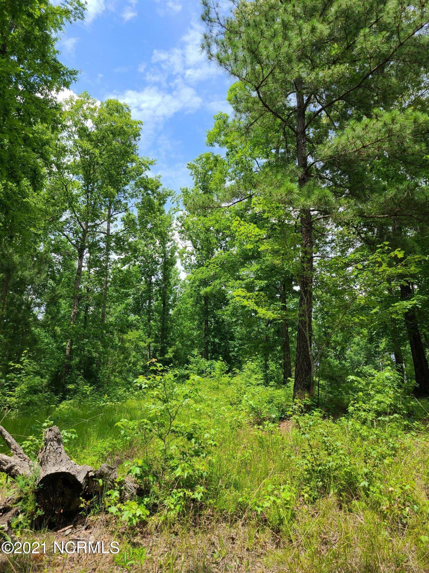Photo of 0 Bluff Road, Chocowinity, NC 27817 (MLS # 100196621)