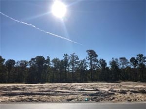 Photo of 4830 Sequoyah Lake Cove, Leland, NC 28451 (MLS # 100188624)
