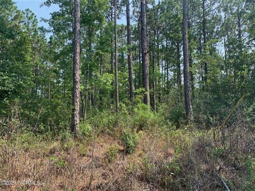 Photo of 746 S Shore Drive, Boiling Spring Lakes, NC 28461 (MLS # 100282624)