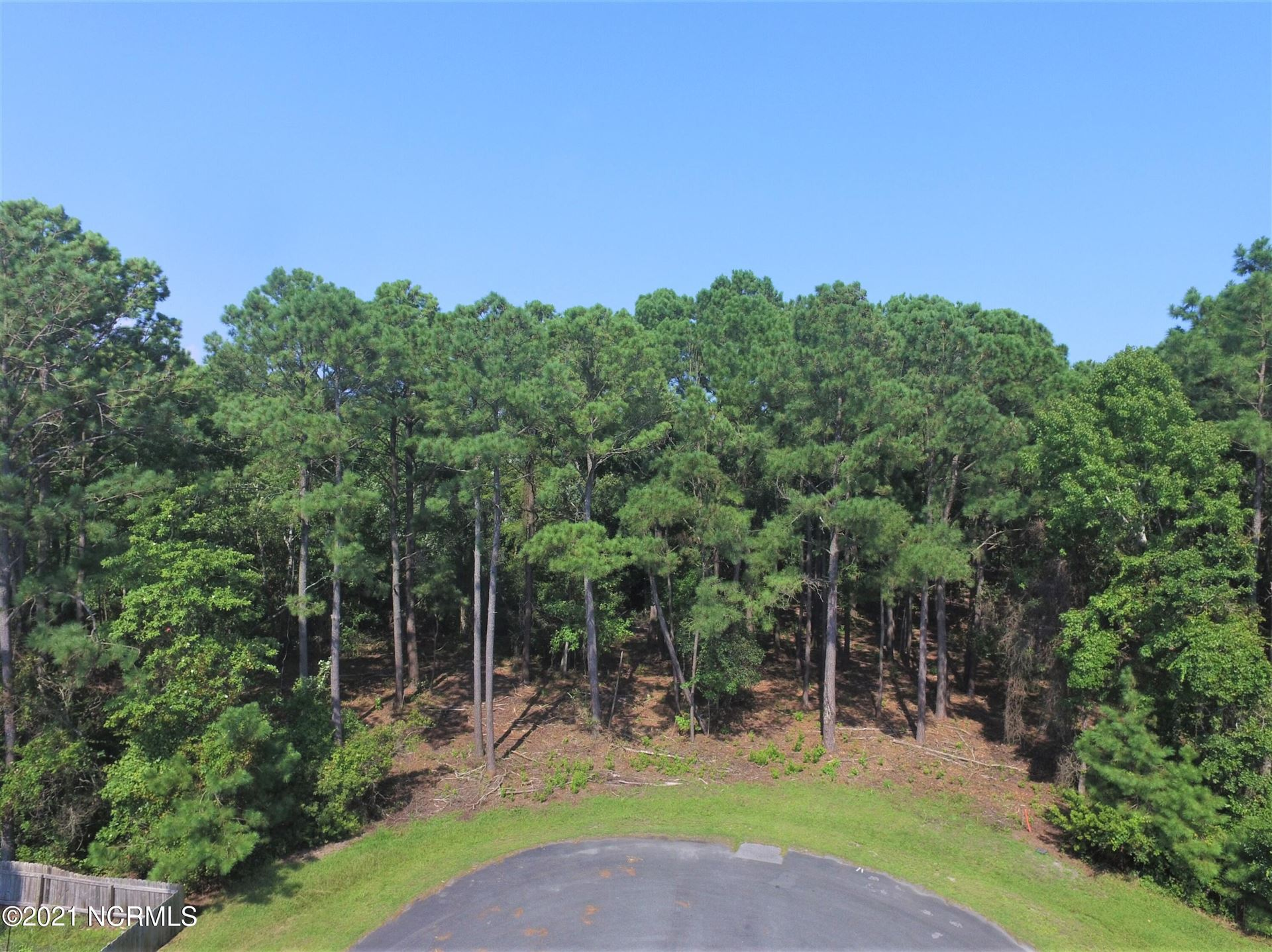 Photo of 124 Oyster Catcher Way, Sneads Ferry, NC 28460 (MLS # 100285624)