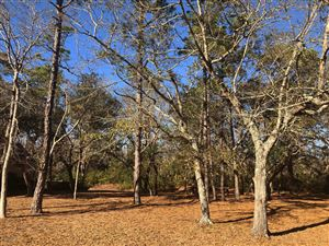 Photo of 2366 St James Drive SE, Southport, NC 28461 (MLS # 100145627)