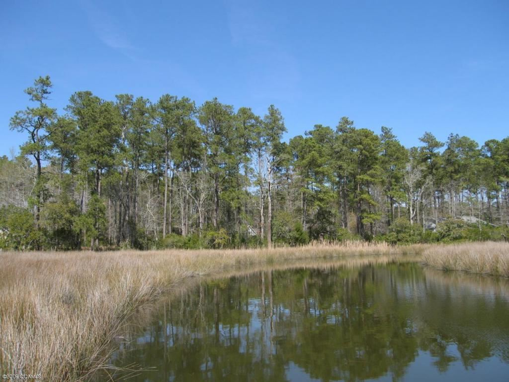 Photo of 145 Cummins Creek Road, Beaufort, NC 28516 (MLS # 100117628)