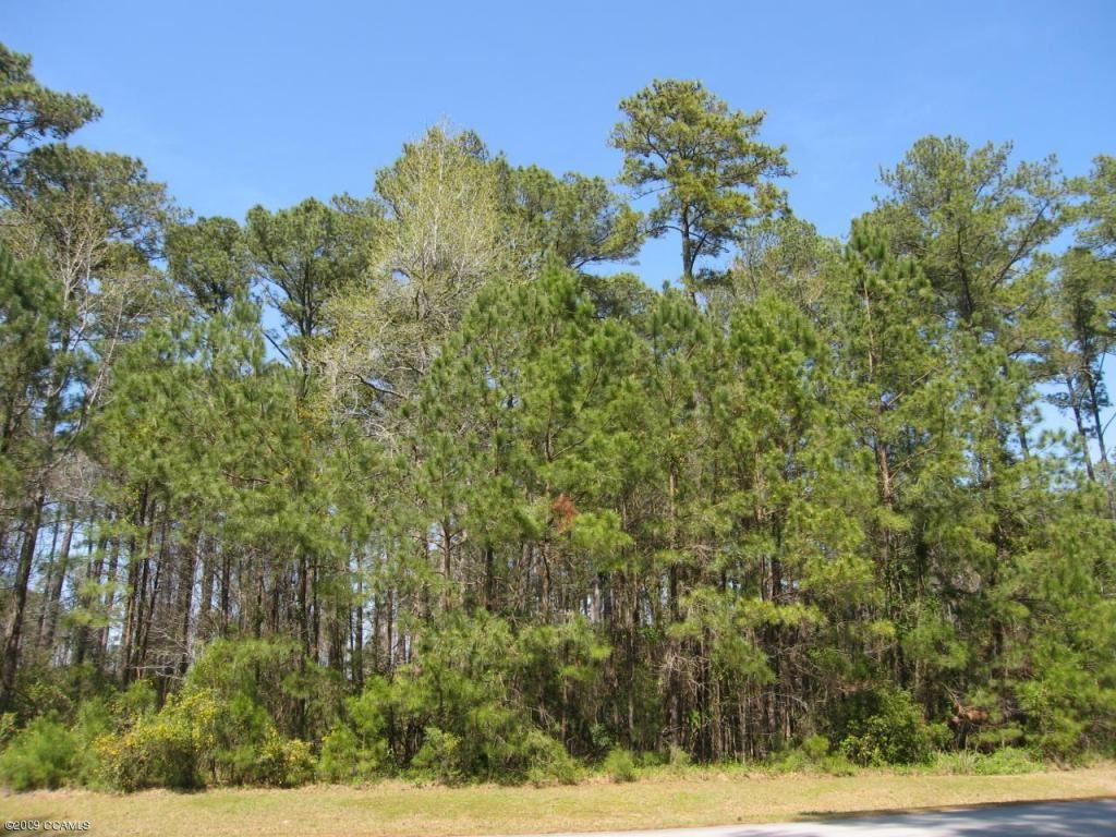 Photo of 144 Cummins Creek Road, Beaufort, NC 28516 (MLS # 100117629)