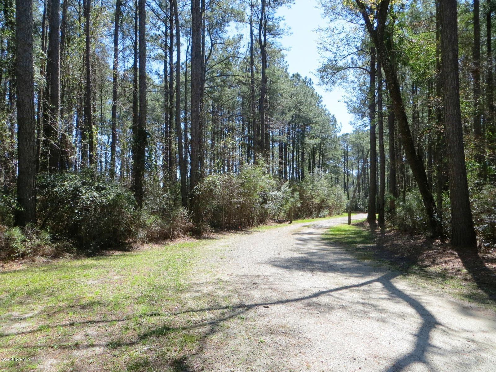 Photo of 260 Donnie Davis Road, Williston, NC 28579 (MLS # 100280631)