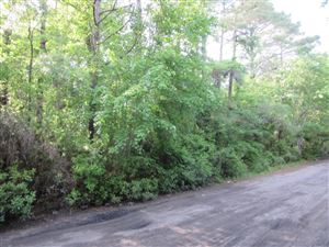 Tiny photo for 7417 Murrayville Road, Wilmington, NC 28411 (MLS # 100127633)