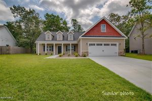 Photo of 549 Luther Banks Road, Richlands, NC 28574 (MLS # 100177635)