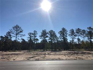 Photo of 5169 Barcroft Lake Drive, Leland, NC 28451 (MLS # 100188635)