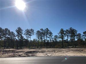 Photo of 5173 Barcroft Lake Drive, Leland, NC 28451 (MLS # 100188637)