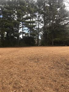 Photo of 1006 Peed Drive, Greenville, NC 27834 (MLS # 100145638)