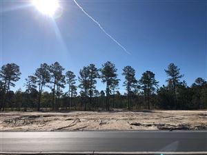 Photo of 5177 Barcroft Lake Drive, Leland, NC 28451 (MLS # 100188639)