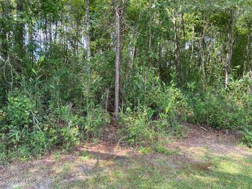 Photo of 197 Mckenzie Trail, Whiteville, NC 28472 (MLS # 100231639)