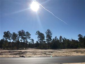 Photo of 5181 Barcroft Lake Drive, Leland, NC 28451 (MLS # 100188641)