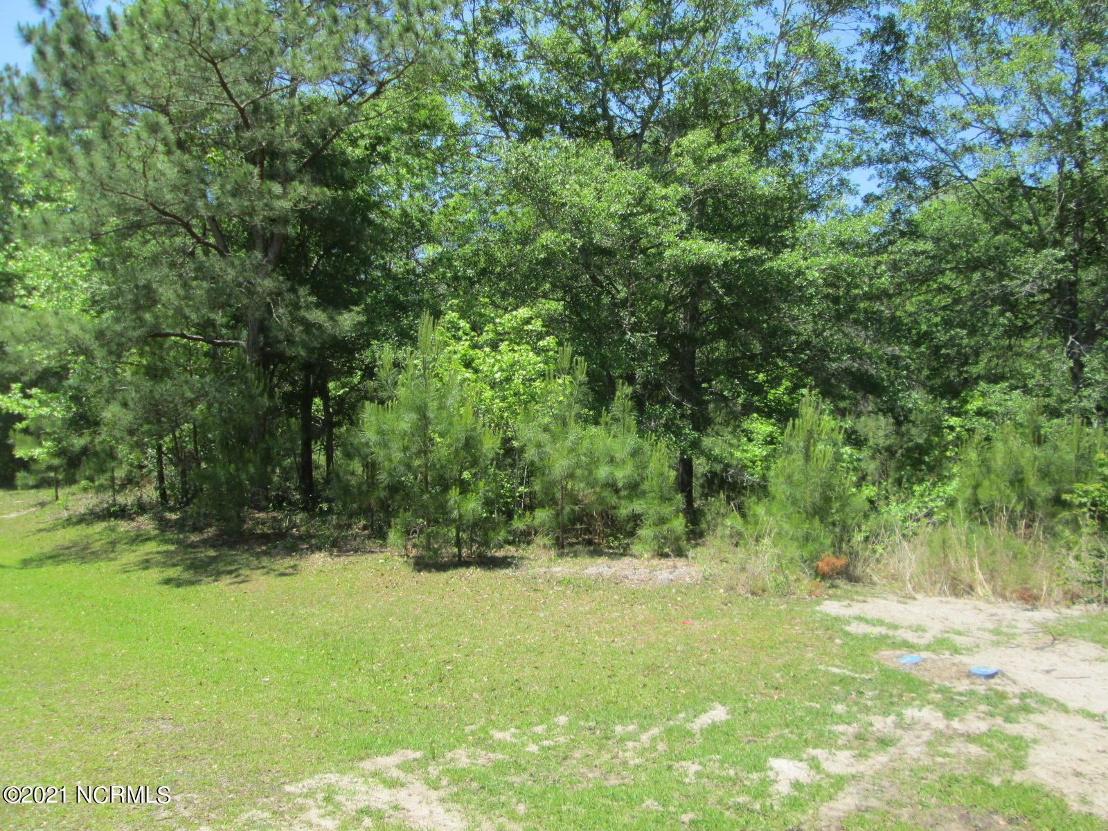 Photo of 1849 Oyster Harbour Parkway SW, Supply, NC 28462 (MLS # 100270641)