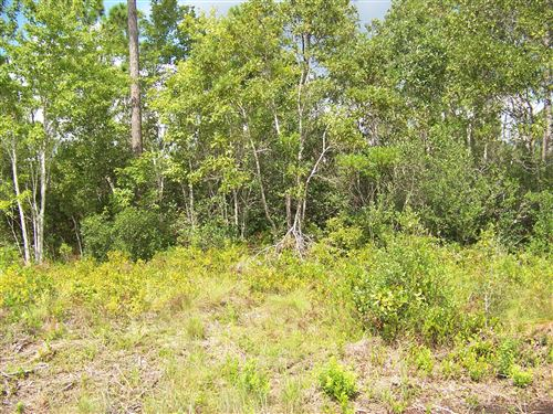 Photo of 720 S South Shore Drive, Boiling Spring Lakes, NC 28461 (MLS # 100213642)