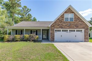 Photo of 274 Blue Creek Farms Drive, Jacksonville, NC 28540 (MLS # 100153645)