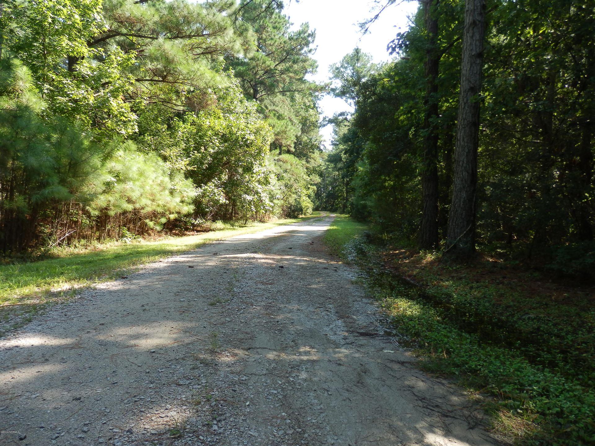 Photo of 280 Donnie Davis Road, Williston, NC 28589 (MLS # 100289648)
